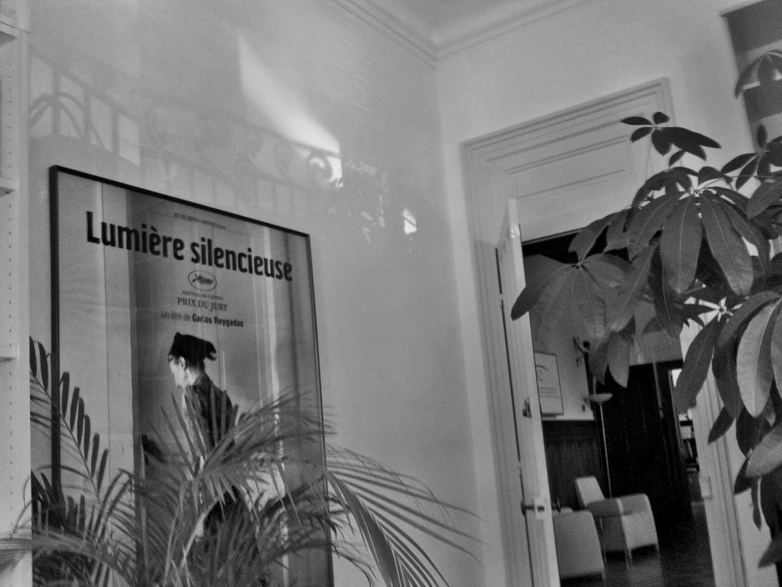 Ombres et lumière dans mon bureau à a Villa Schützenberger (Strasbourg, mai 2011). (Photo : André Lange-Médart)