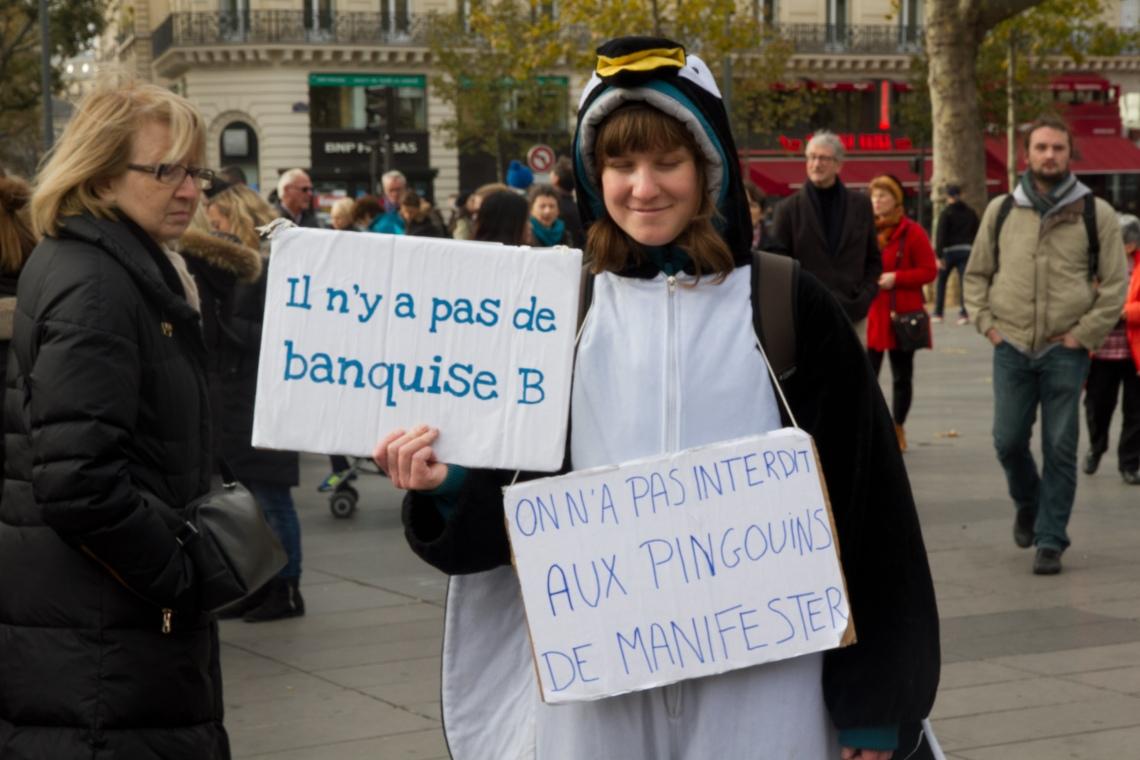 """""""Il n'y a pas de banquise B"""" (Photo André Lange-Médart)"""