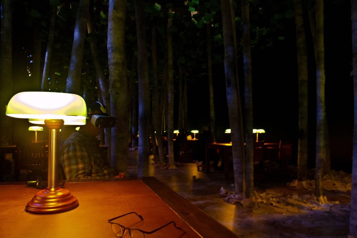 La forêt-salle de lecture. (Photo André Lange-Médart)